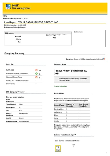 dun and bradstreet sample report